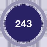 Bullet showing 243